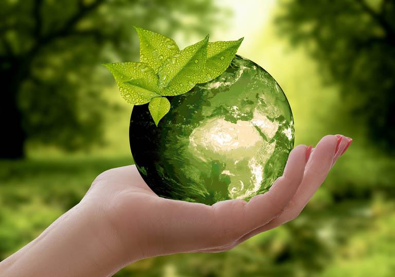 Parquet ecologico, bioedilizia, green product: facile da dire, ma è sempre vero?