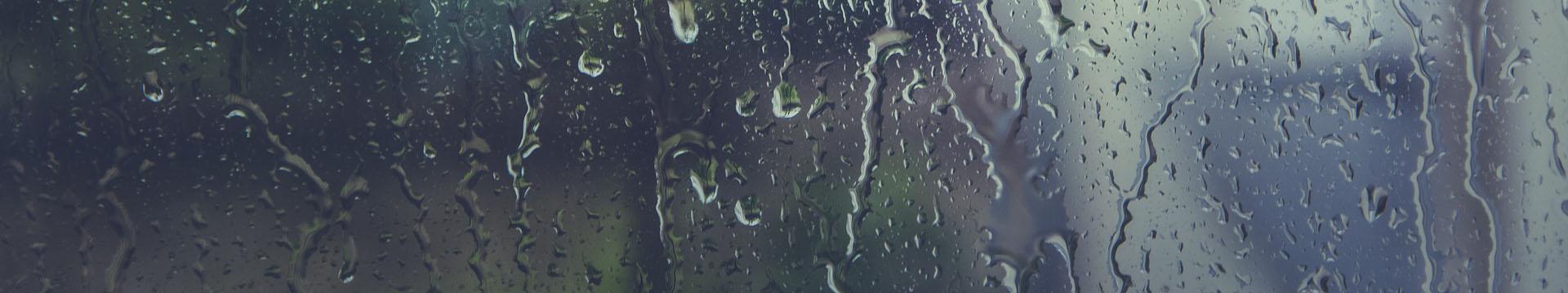 Parquet, umidità e muffa: prevenzione e cura