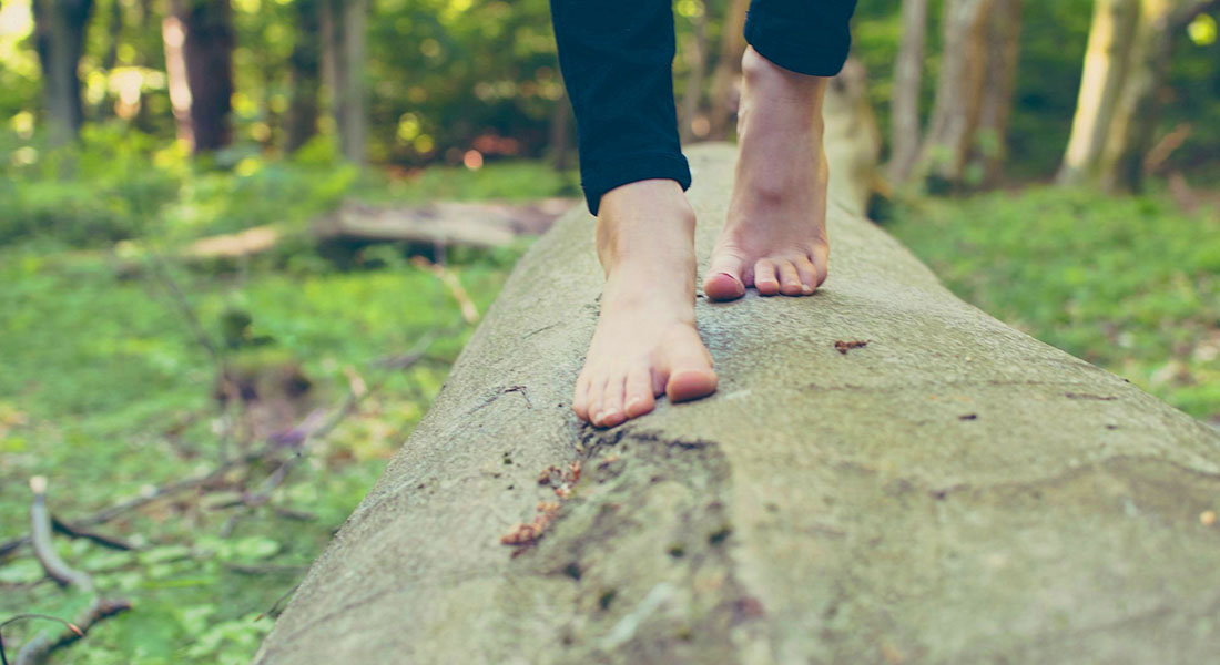 Passeggiare nei boschi riduce lo stress: e se fosse possibile ricrearne i benefici in casa?